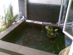kolam ikan ku
