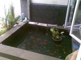 kolam ikan sederhana berbagi itu baik