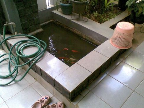 kolam kecil banget